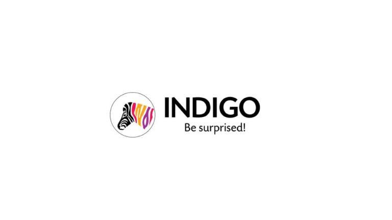 Indigo Paints to Launch IPO
