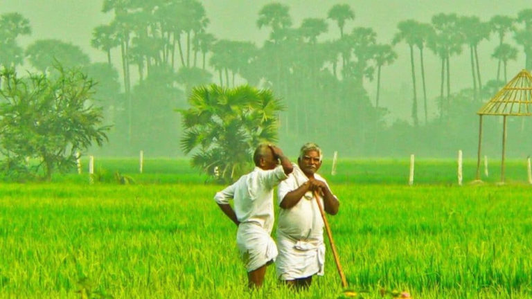 Indian Govt. Committed to Farmers' Welfare