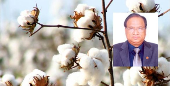 CCI Offers Good Cotton the Most Competitive Terms - Pradeep Kumar Agarwal, CMD, The Cotton Corporation of India Ltd.