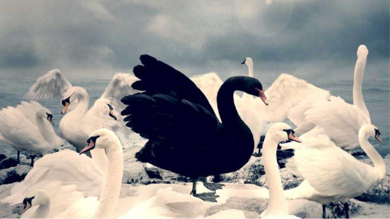 Covid-19 way beyond Black Swan Event